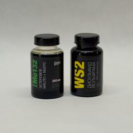 Mo132 + WS2